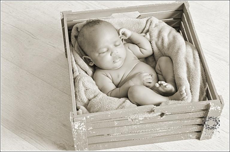 newborn photography0037